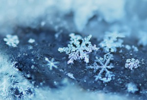 blue-ice-icy-snow-snowflake-Favim.com-409580_large