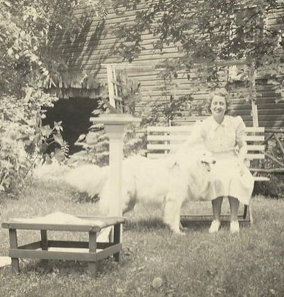 A Summer Garden Poem By Louise Gluck Silver Birch Press