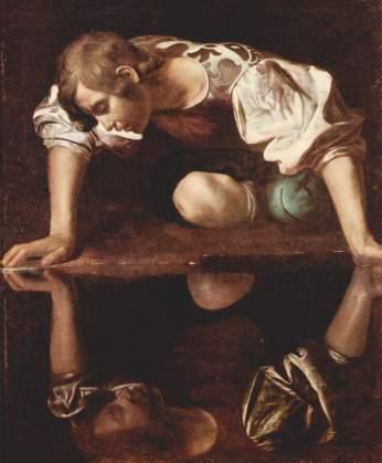 narcissus(1)