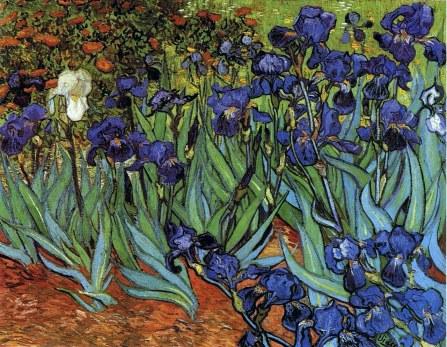 irises-1889