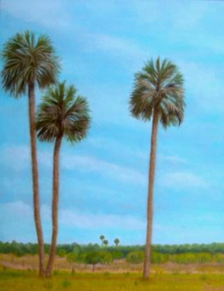 Micanopy Palms