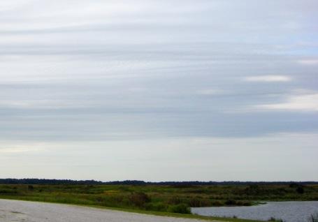 Pin Oak Lake