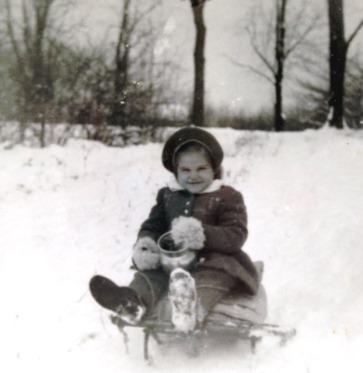 snow-sled