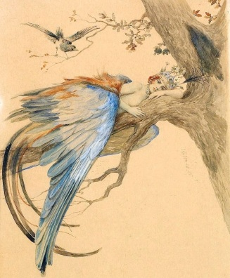 blue-bird-bird-sirin