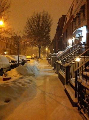 Snow Storm in Brooklyn