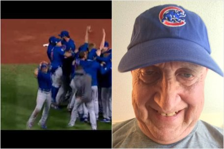 cubswinhatcollage