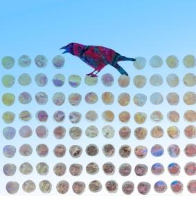 bird-by-ann-powell