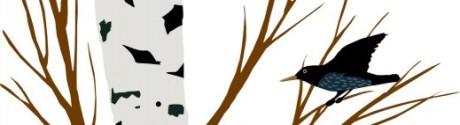 cropped-hi-res_logo1