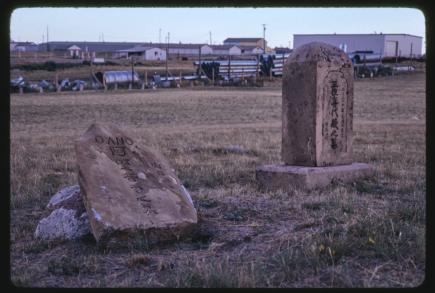 kay young 1979