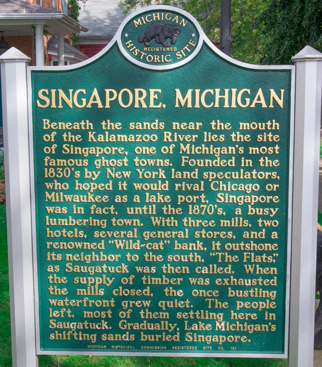 Singapore_Michigan