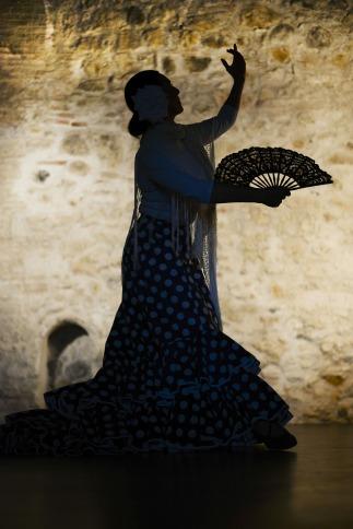 flamenco-1046485_1920